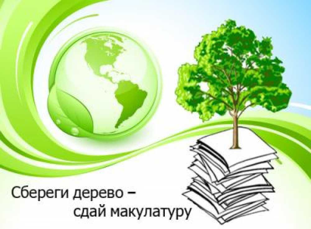 Собери макулатуру-спаси дерево
